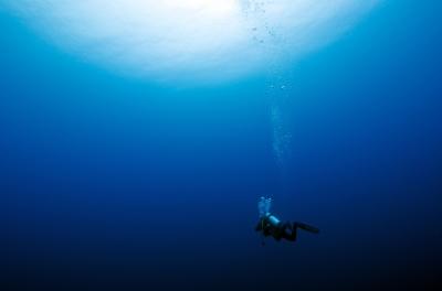 D&D Diving